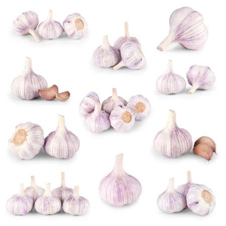 Garlic set on white background