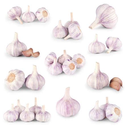 Garlic set on white background