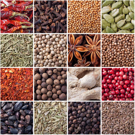 spices seamless texture photo
