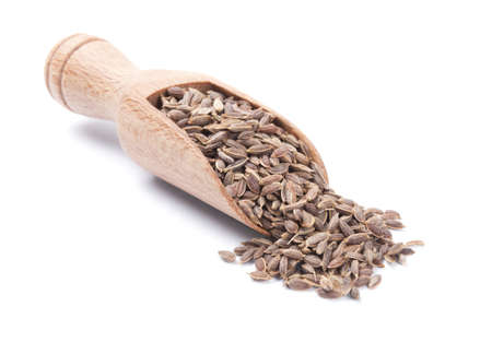 dill seed: Wooden shovel with dry dill seeds scattered from it