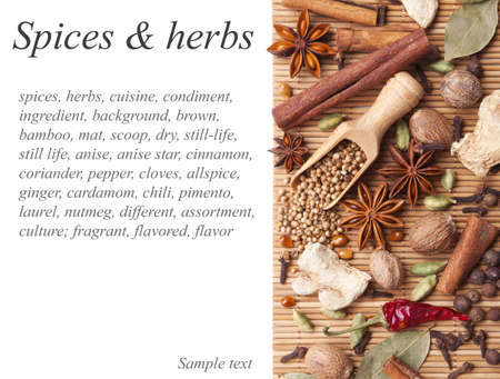 Background with spices and herbs Stock Photo - 13840692