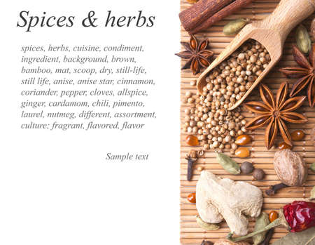 Background with spices and herbs Stock Photo - 13840700