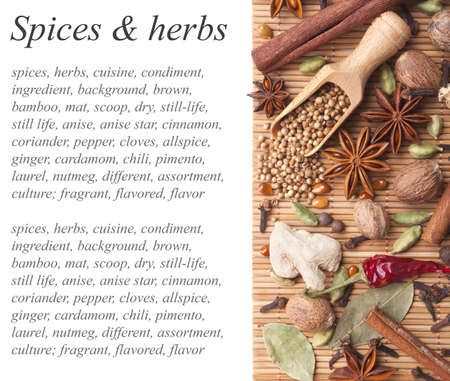 Background with spices and herbs Stock Photo - 13840701