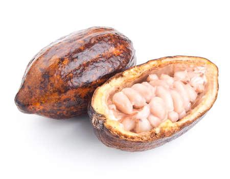 rauwe cacao pod en bonen geïsoleerd op een witte achtergrond