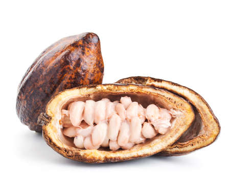 raw cocoa pod and beans isolated on a white background