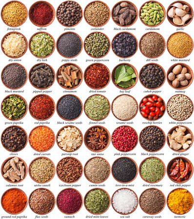 large collection of different spices and herbs with labels photo