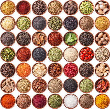 large collection of different spices and herbs isolated on white background photo