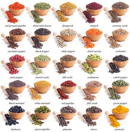 especias: colección de diferentes especias y hierbas con etiquetas Foto de archivo