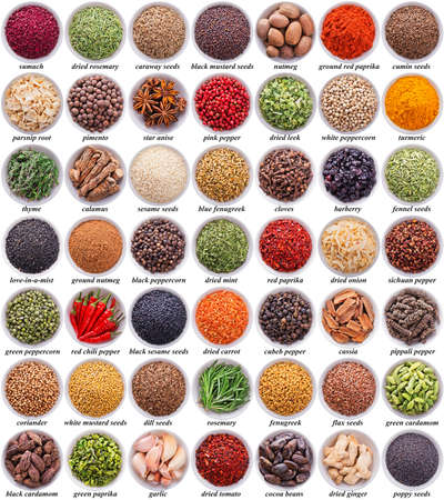 large collection of different spices and herbs isolated on white background Standard-Bild