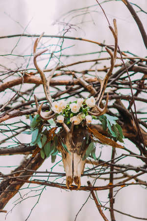 antler: deer antler with flower decoration