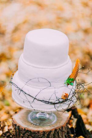 wedding customs: Wedding Cake Close-up Stock Photo