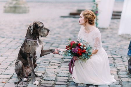 Smart dog gives a pow to the charming blond mistress-bride.