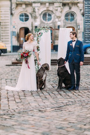 lovingly: Stylish young groom and bride lovingly looking on each other and holding two big purebred dogs in the city center.