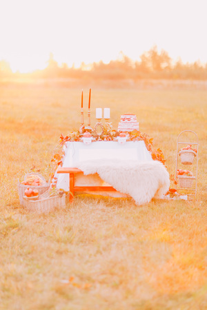 chear: Lovely vintage wedding table with cake and fruits in the autumn field.