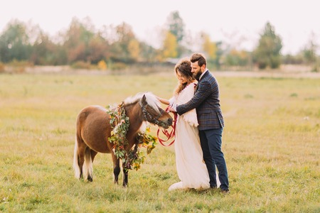 stroking: Lovely wedding couple stroking little pony on the field.