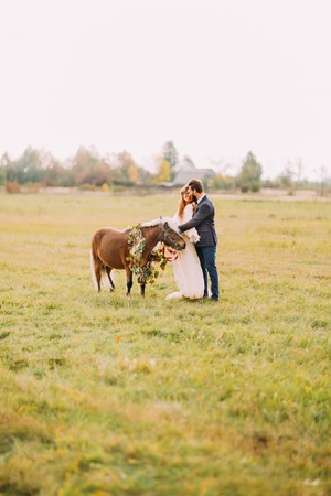 two stroke: Beautiful newlyweds stroking little cute pony on the field.