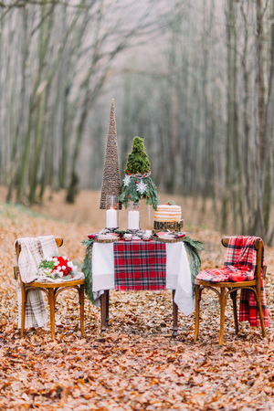 creatively: Table creatively setted for two and decorated with christmas decorations  in the autumn forest. Stock Photo