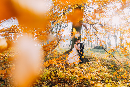Stylish young wedding couple in love against the background of autumn forest, blur