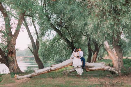 feliz pareja se casó sentado sosteniendo las manos en el tronco de árbol en el prado de springrark o bosque en el día soleado.