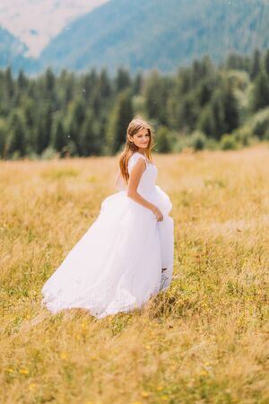 marvelous: Bride posing on the golden autumn field with marvelous mountain landscape behind her. Stock Photo