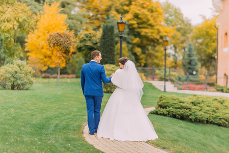 a newly married couple: Newly married couple strolling in sunny park at alley. Groom is gently holding hand of his elegant bride.