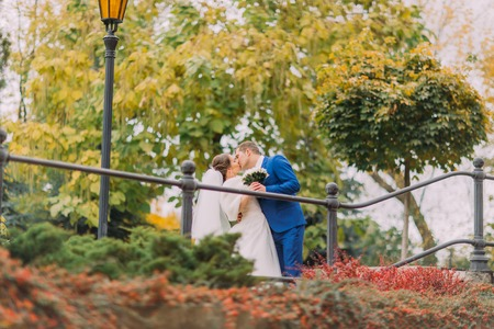 newly married couple: Newly married couple kissing in sunny park near handrail. Groom is gently holding his elegant bride.