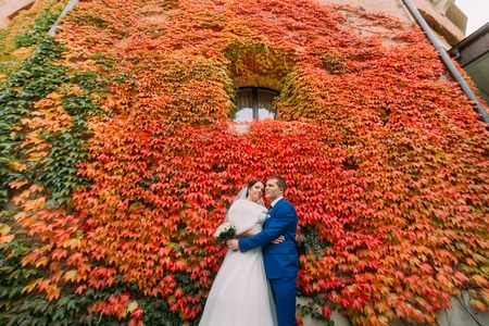fortified wall: Elegant beautiful wedding couple, bride and groom posing in park near fortified wall with red creeping plant.