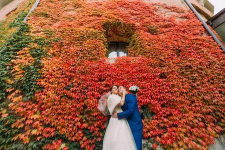 creeping plant: Elegant beautiful wedding couple, bride and groom posing in park near fortified castle wall with red creeping plant. Stock Photo