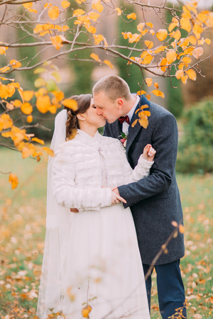 passionate kiss: Happy newlywed couple share a passionate kiss in the beautiful autumn park.