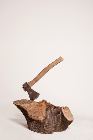 filings: Stump with axe isolated on white background