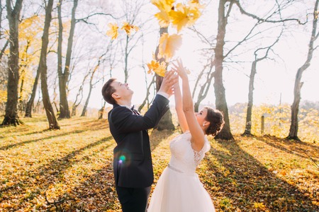 Happy newlyweds are throwing up the yellowed leaves in the park. Banque d'images