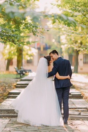 The vertical view of the kissing newlywed couple while walking in the park.