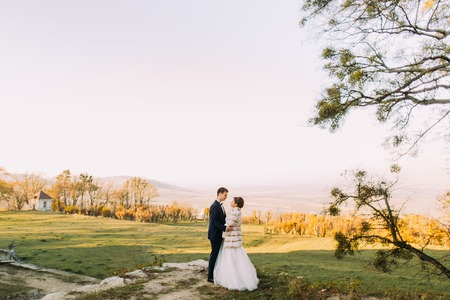 The horizontal full-length photo of the newlyweds holding hands at he background of the spring forests and mountains. Imagens