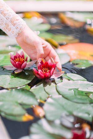 De hand van de bruid raakt de waterlilia aan