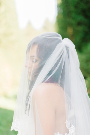 Bride hidden under the veil stands in the forest Stock Photo