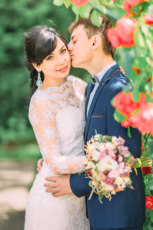 Half-length portrait of the groom kissing the pretty bride in the cheek in the lovely red roses garden. Stock Photo