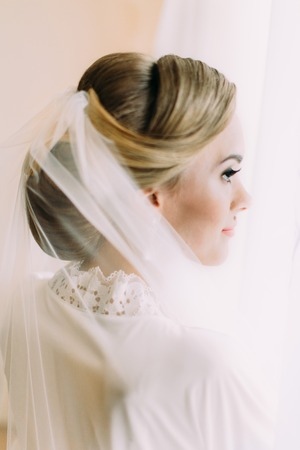 Side view of the bride hairstyle decorated with veil. Banco de Imagens