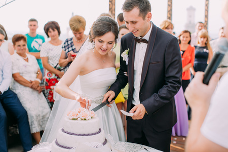 Close-up view of the newlywed couple cutting their first piece of wedding cake.