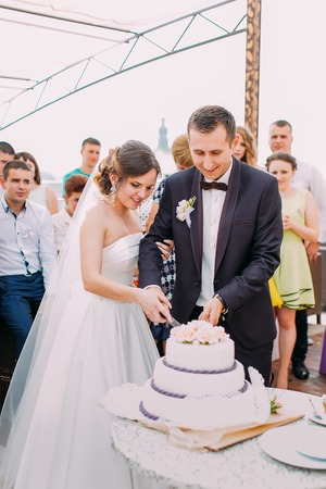 Close-up view of the cheerful just married cutting the wedding cake Stok Fotoğraf