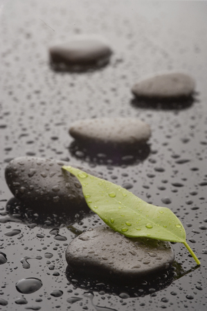 Spa massage stones with leave and water drops, close up