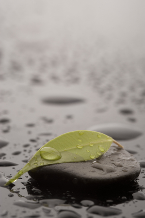 Spa massage stone with leaf and water drops, close up Stock Photo