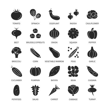 Vegetables vegan silhouette icons business analysis vector set. design elements vegetables fresh healthy food vector symbol set line icons money commerce logistics search investor vector symbols set.
