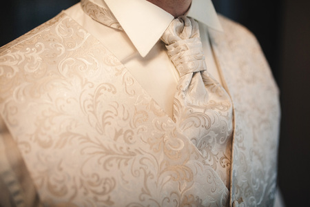 cropped photo close-up mens waistcoat with white pattern