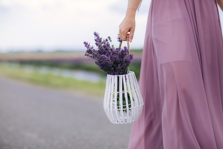 Beautiful young woman in blue dress holds bouquet of flowers lavender in basket while walking outdoor through wheat field at sunset in summer. Provence, France. Toned image with copy space. The girl carries a bouquet of lavender in a white basket