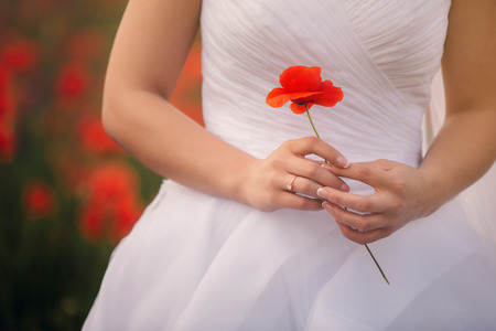 The close-up view of the hands of the bride is holding the poppy flower. Wedding day