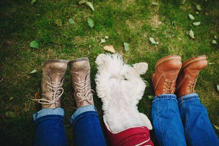 Dog and couple on the green grass with leaves. Feet close up. Focus on feet. People relaxing after walking. Place for inscription. Stock fotó