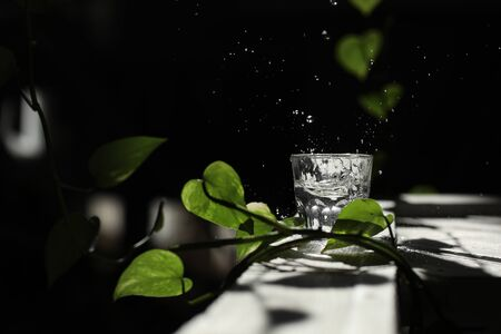 a glass of water on a white table with a branch of a green leaf. splashes in the sun's rays. glass of glass with water
