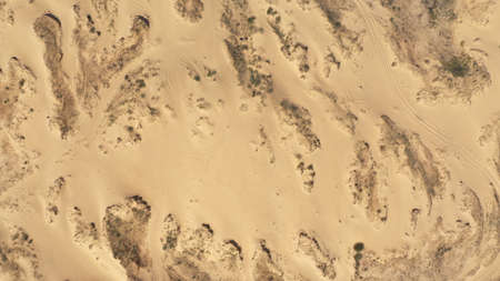 Aerial View of the Textures and Patterns of the Desert Sands. Beautiful landscape. Desert and green bushes.