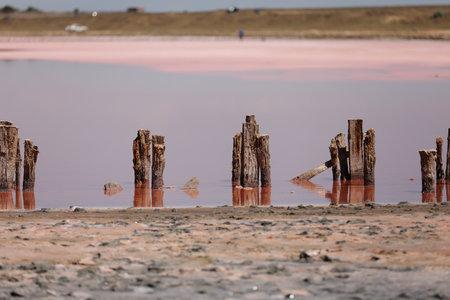 A fantastic pink salt lake with salt crystals on wooden pillars on sunny day, Kuyalnik Liman in Ukraine, Odessa at Summer. Copy space