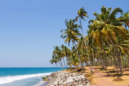 One of India finest beaches in India, Varkala beach, Kerala. Beautiful view sunny day during summer time. Reklamní fotografie